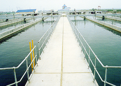 Heavy metal wastewater treatment