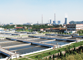 Advanced treatment of low COD wastewater